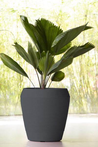 EGIPCIO Pflanztopf, 45 cm - graphite